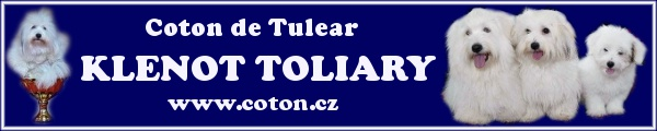 Klenot Toliary